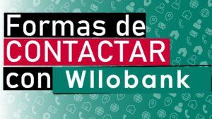 contactar con wilobank